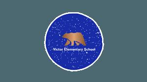 ves header logo